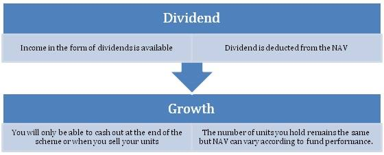 dividendorgrowth